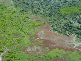 Diamantina River Flood